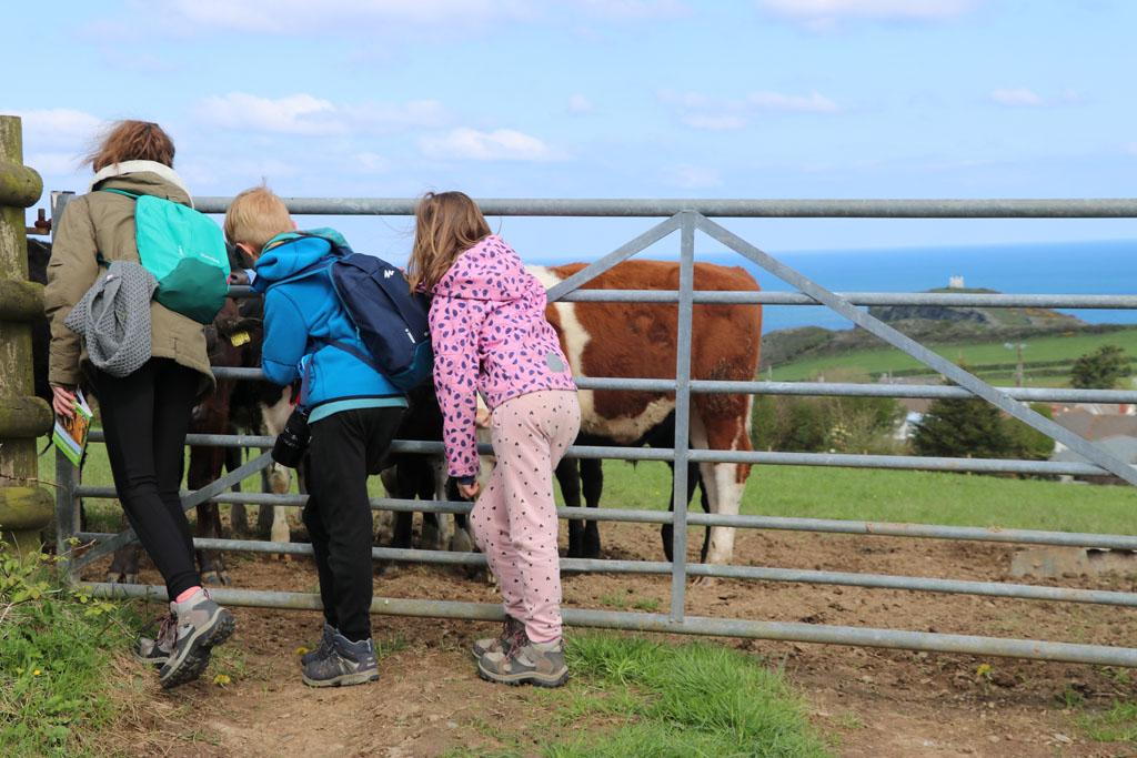 Wandelen in Cornwall met kinderen
