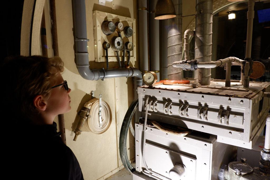 De slangen liggen gewoon tussen de machines van het oude schip. Zie je ze liggen?