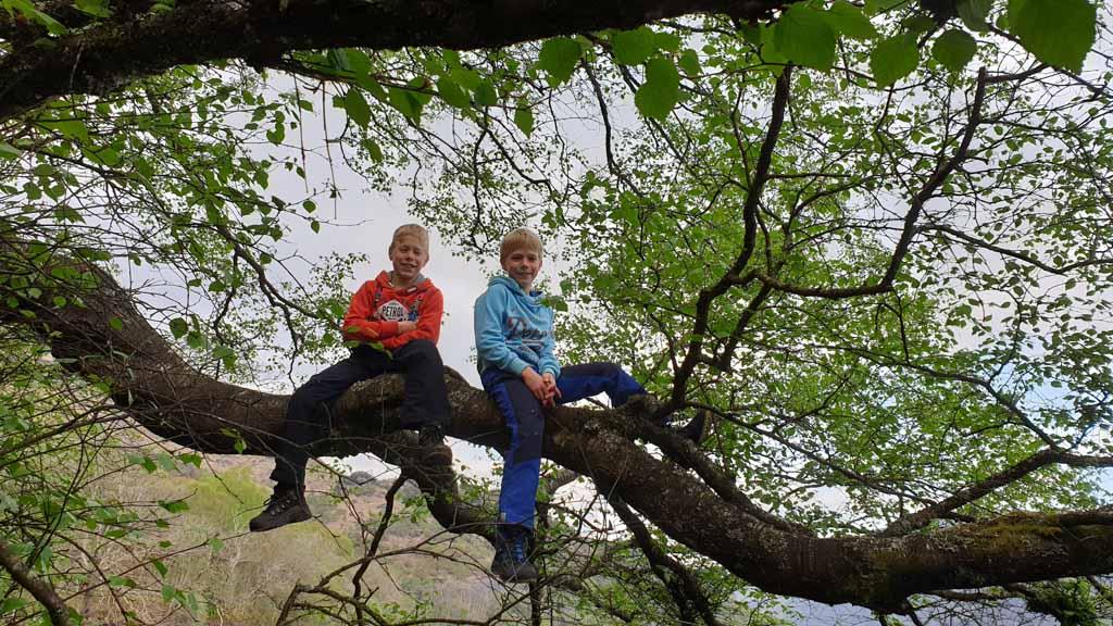Er wordt tijdens de reis flink geklommen in de bomen.
