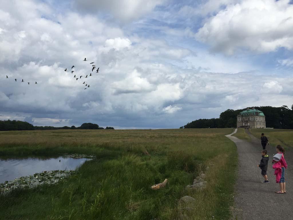 Wandelen naar het jachtslot op Jægersborg Dyrehave.