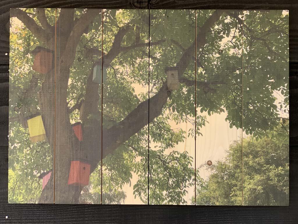 De foto op sloophout geprint.