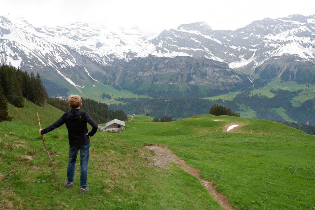 Alpenweide Bruni Engelberg