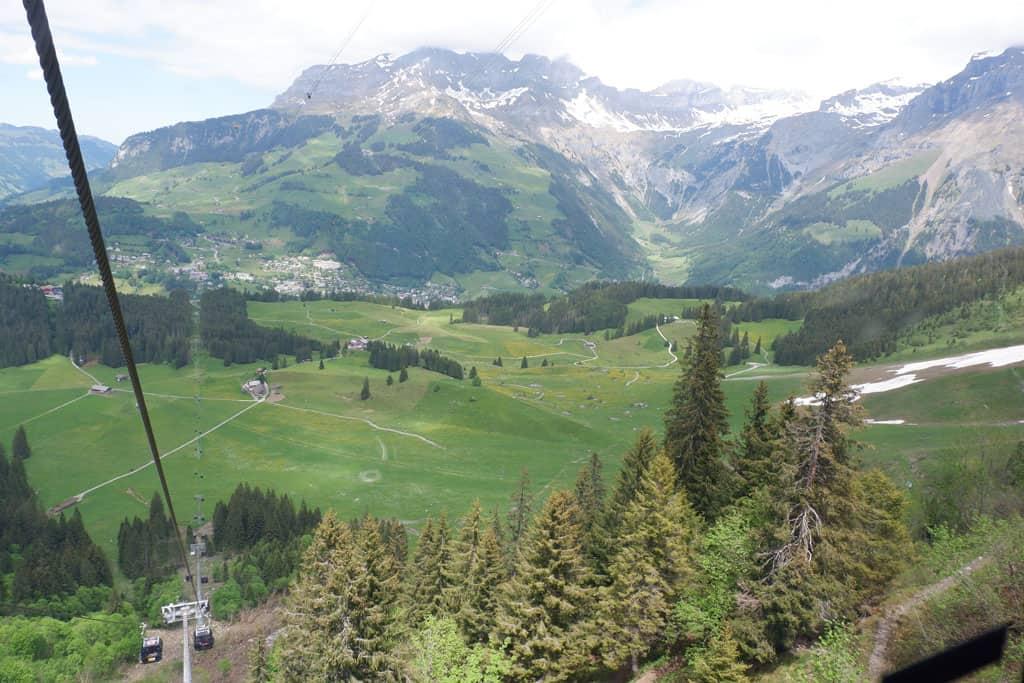 TITLIS Engelberg Alpenweide