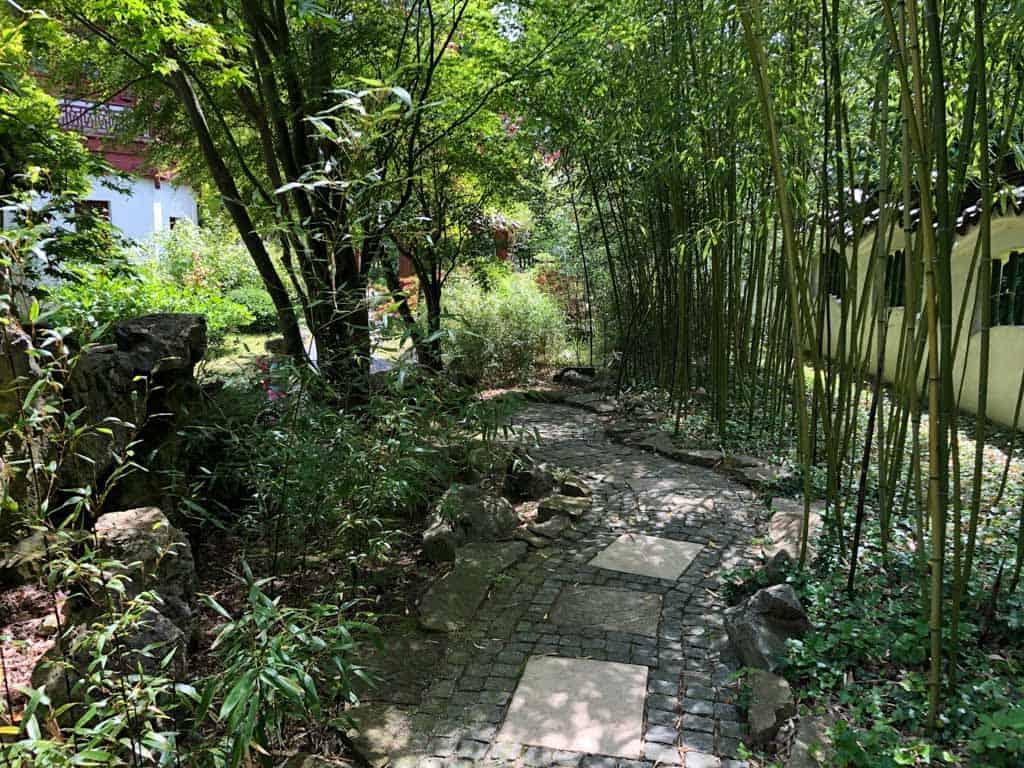 Lopen tussen de bamboe