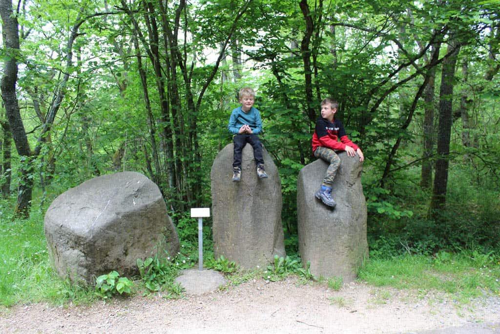 Het wandelpad naar het zoekgebied en de mijnen in de Steinkaulenberg is een geologie-leerpad. We zien grote stenen en zwerfkeien