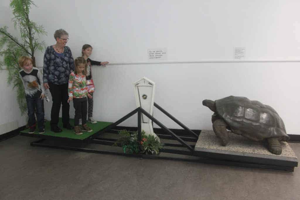 Reptielenzoo Iguana, een must see als je in Vlissingen bent