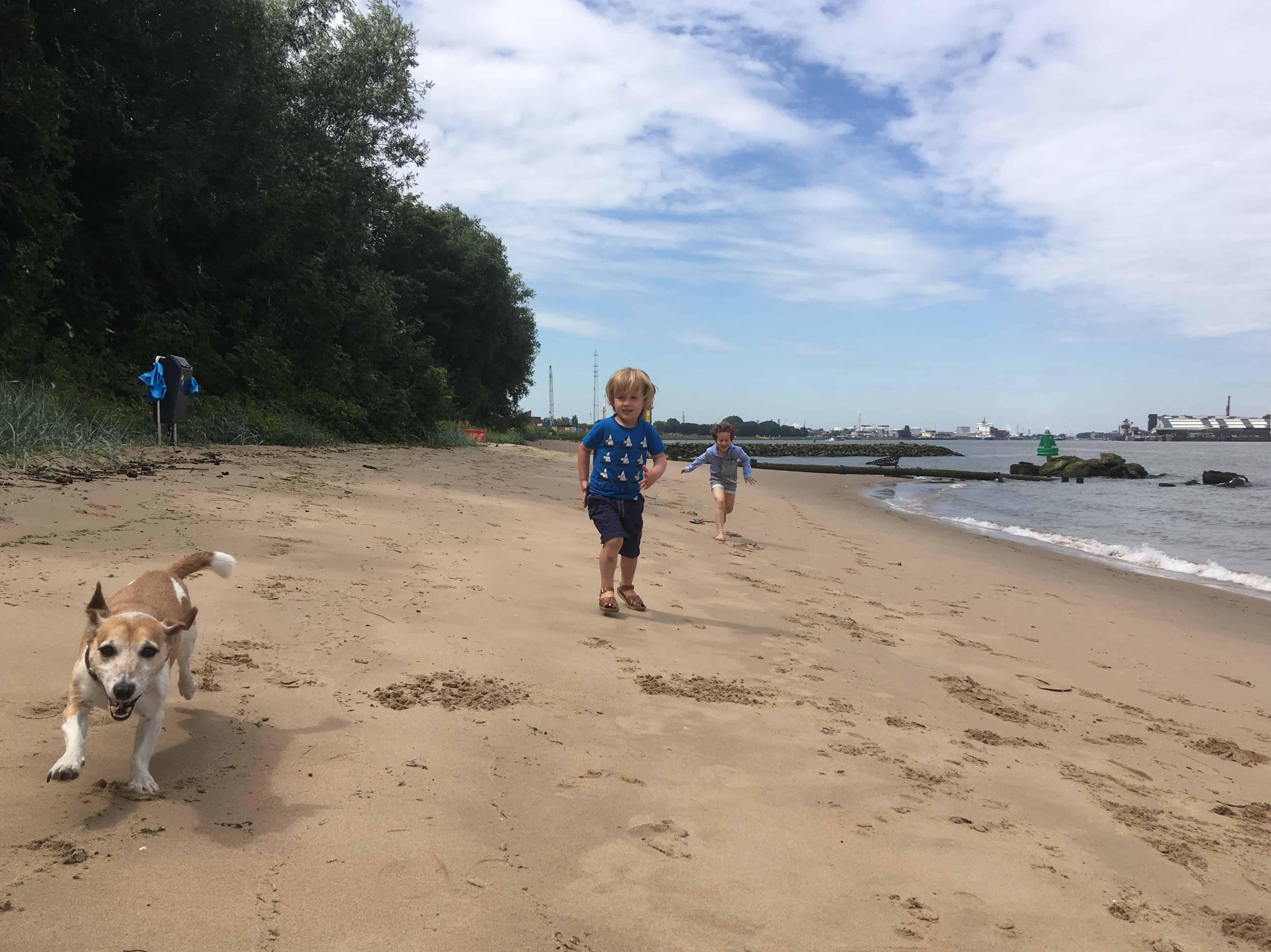 De euforie van op het strand zijn.