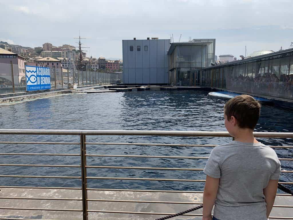 Tijdens de rondleiding mogen we buiten bij de dolfijnen kijken.