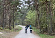 Terug fietsen naar Prerow.