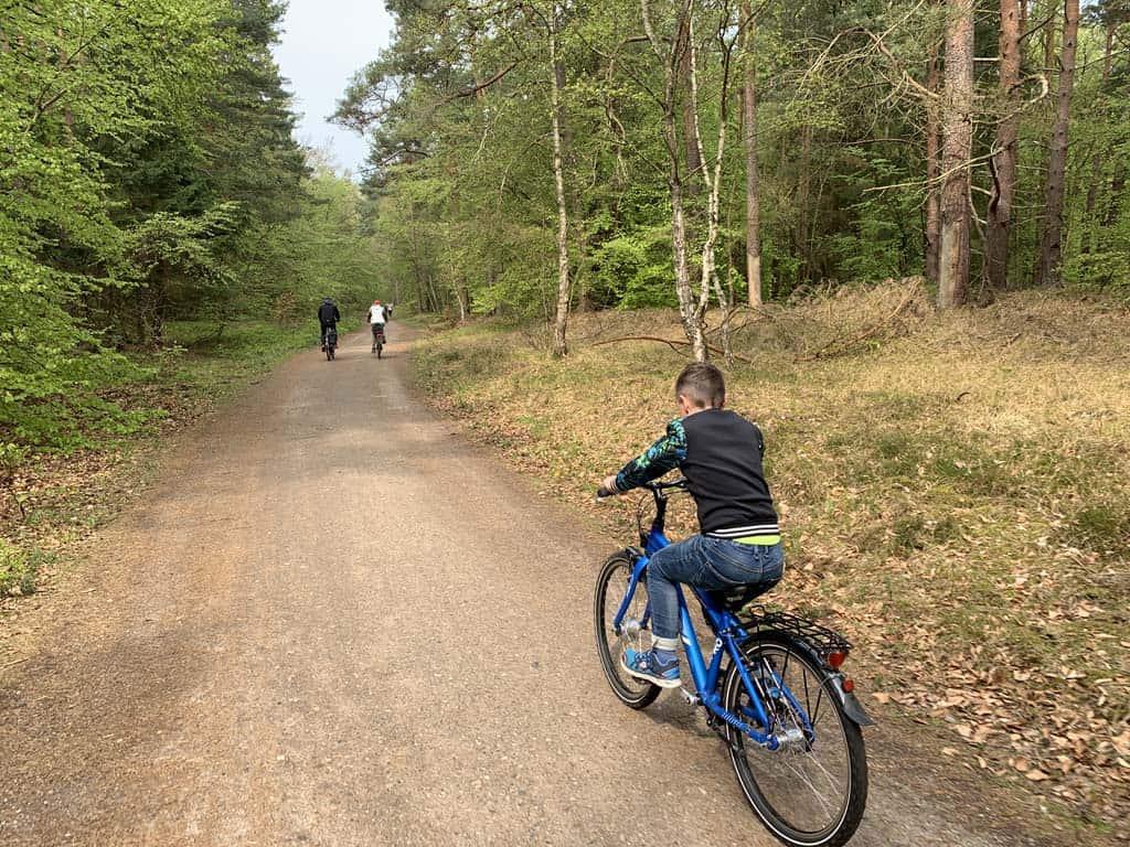 We fietsen verder door het bos.