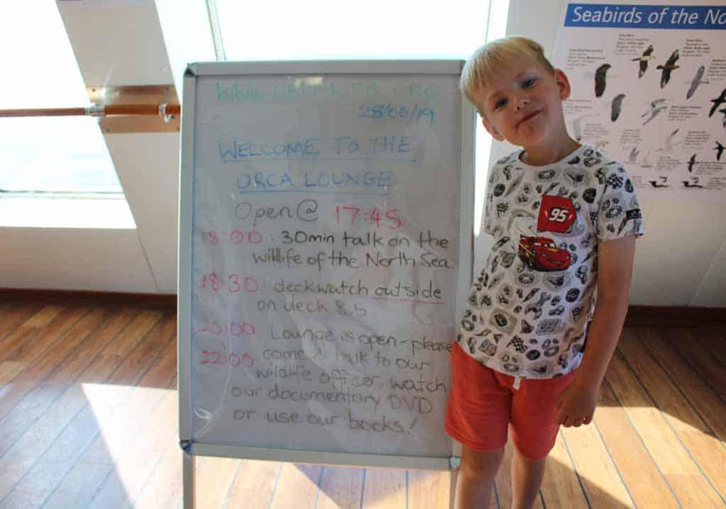 Het programma van ORCA Wildlife Center van vandaag