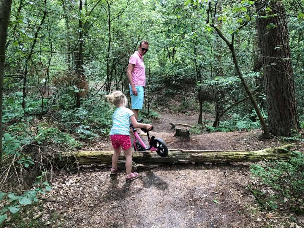 En boomstammen om overheen te klimmen