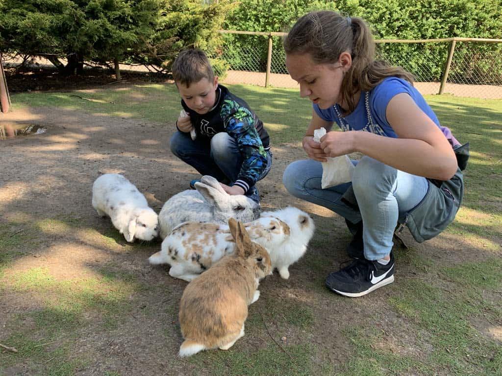 Zoveel zachte nieuwsgierige konijnen.