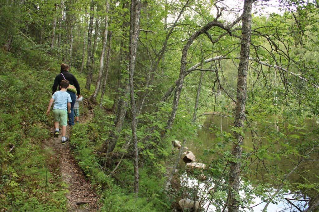 Op de camping starten leuke wandelroutes.