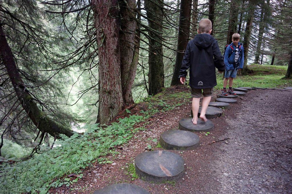 Grote stappen over de boomstammen brandnertal-wandelen-met-kinderen
