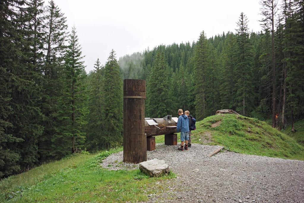 De boomstammen vertellen ons over de natuur hier in de Alpen brandnertal-wandelen-met-kinderen