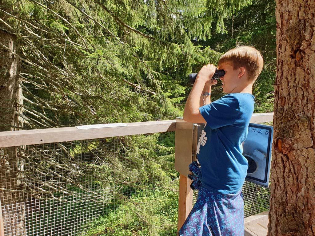 Handig! Kastjes met een verrekijker om boommarters te spotten Brandnertal-Wandelen-met-kinderen