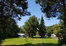 Prachtige kampeerplekken midden in de natuur op camping Ulbjerg.