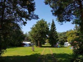 camping-ulbjerg-foto-06-natuurplekken