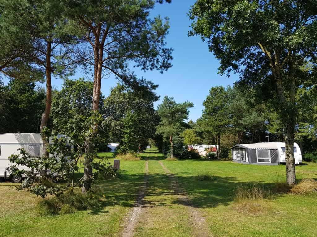 Wat een rust, ruimte en natuur op camping Ulbjerg!