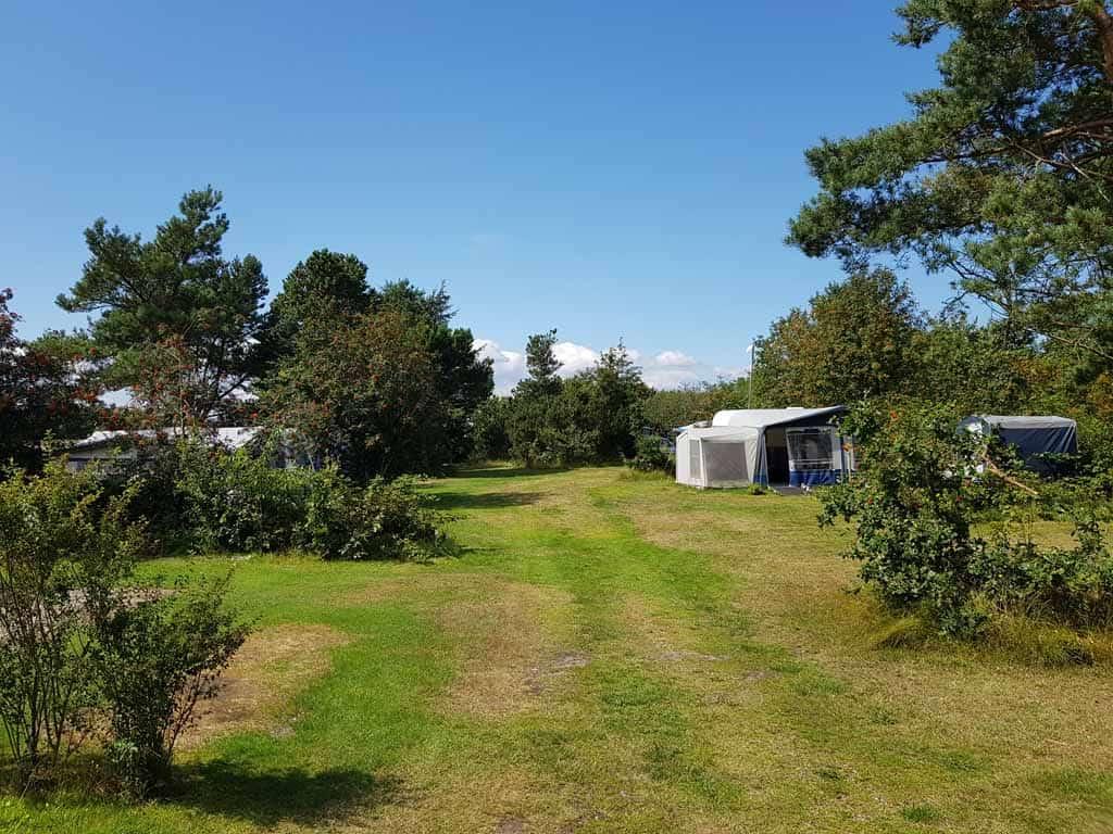 Uniek in Denemarken: Ruime en groene kampeerplekken midden in de natuur,