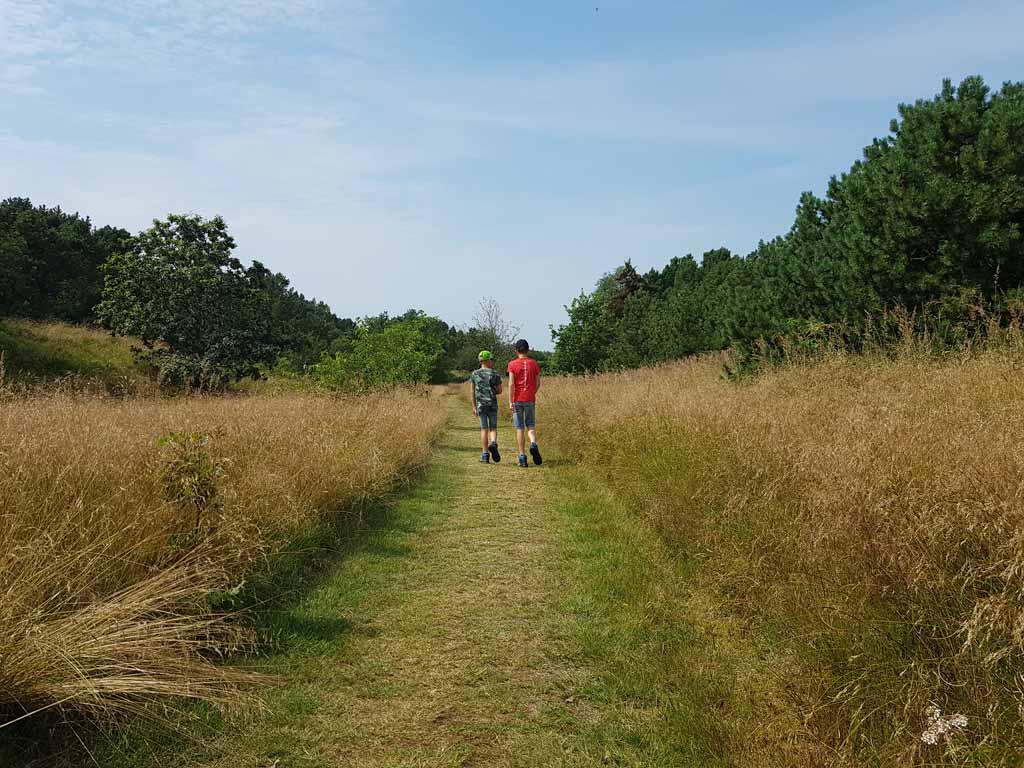 Wandelen op de camping in de natuur.
