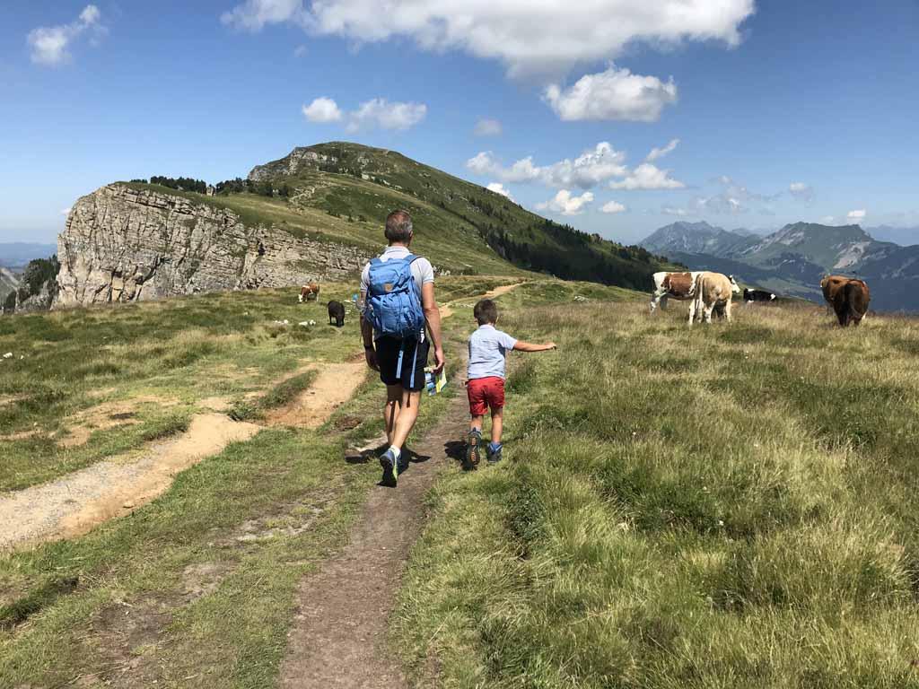 Het eerste stuk van de wandeling loopt over de bergkam van de Niederhorn.
