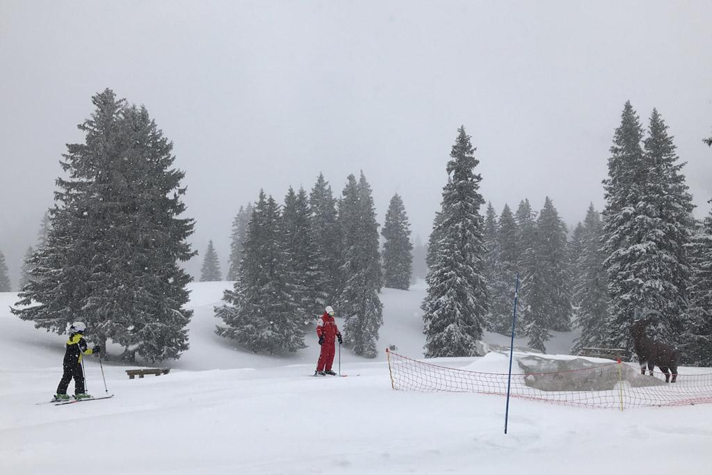 We skiën terug naar de skilift.