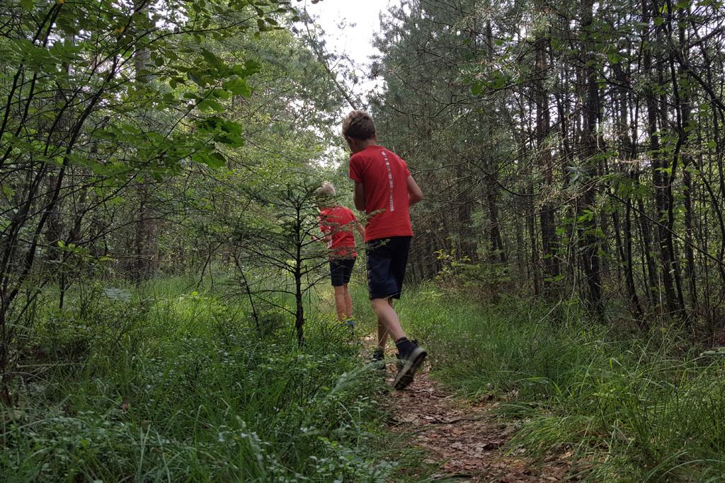 Wandelen in het bos met GPS speurtocht.