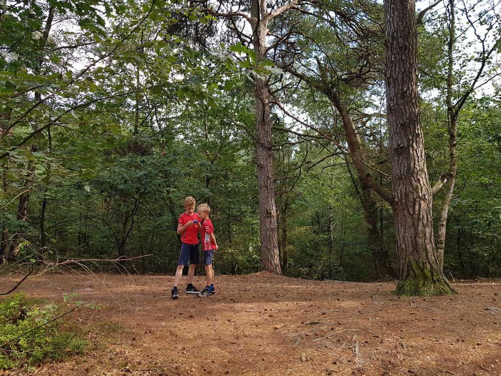 Bij een open stuk in het bos kunnen we vijf richtingen op. Welke moeten we nemen?