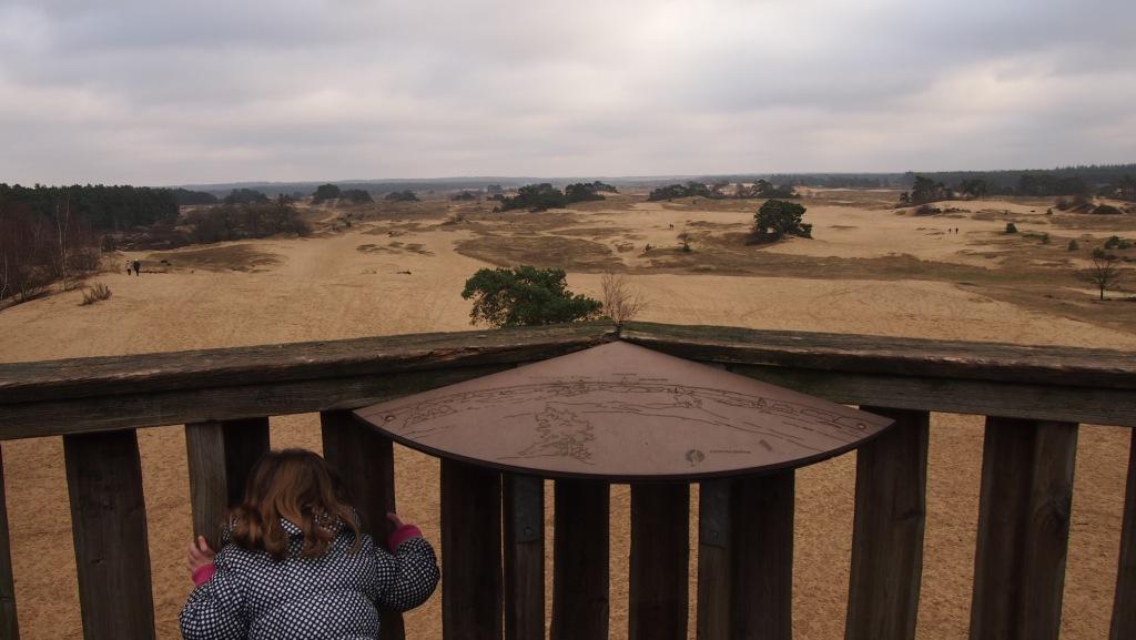 Vanaf de uitkijktoren lijkt Kootwijkerzand een grote zandbak