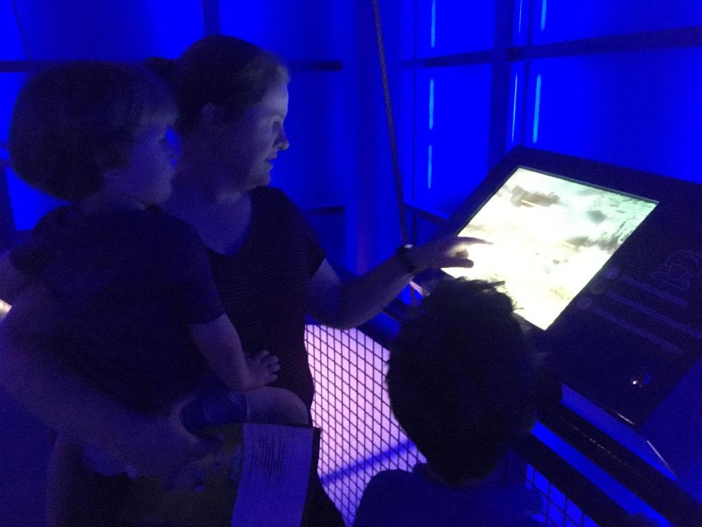 In de kubus leren we alles over vulkanen en geisers. Koren op de molen van mijn jongens.