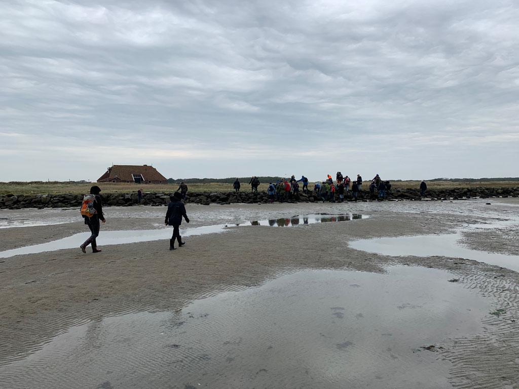 Wadlopen met kinderen en klimmen over de wal