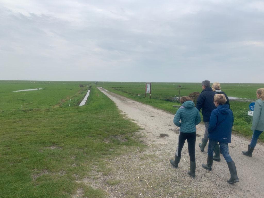 Onderweg naar de waddendijk Terschelling