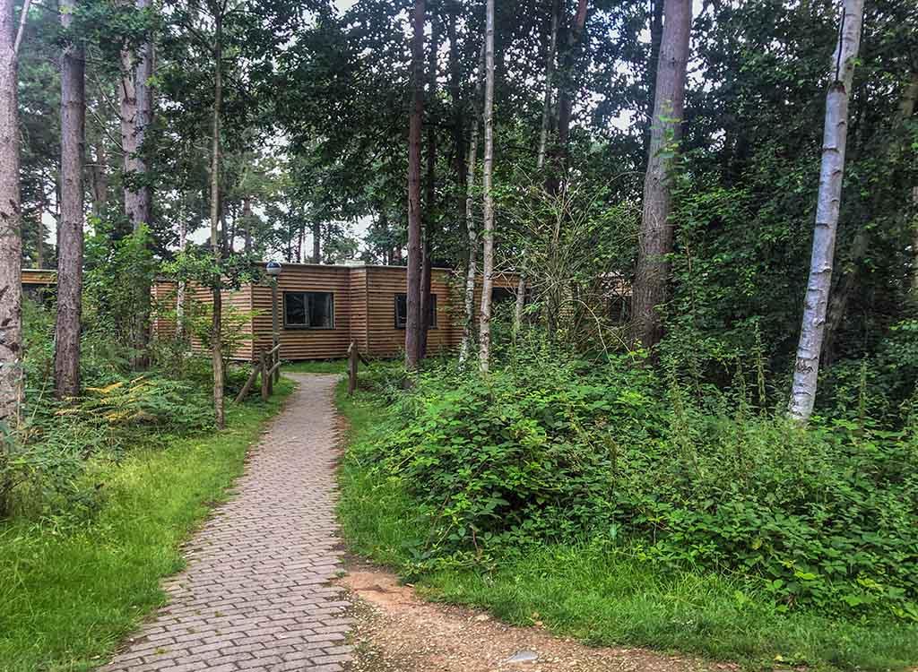 Ook de standaardhuisjes bij Centerparcs Sherwood Forest zien er netjes uit