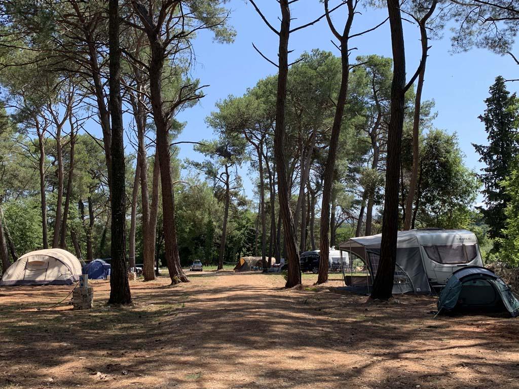 De kampeerplekken zijn niet afgescheiden door haagjes ofzo, het zijn vrije plaatsen tussen de bomen.