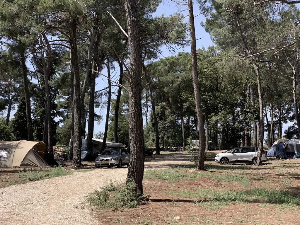De kampeerplekken hebben in dit gedeelte voldoende schaduw.