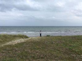 Zuid-Jutland-Skovmose