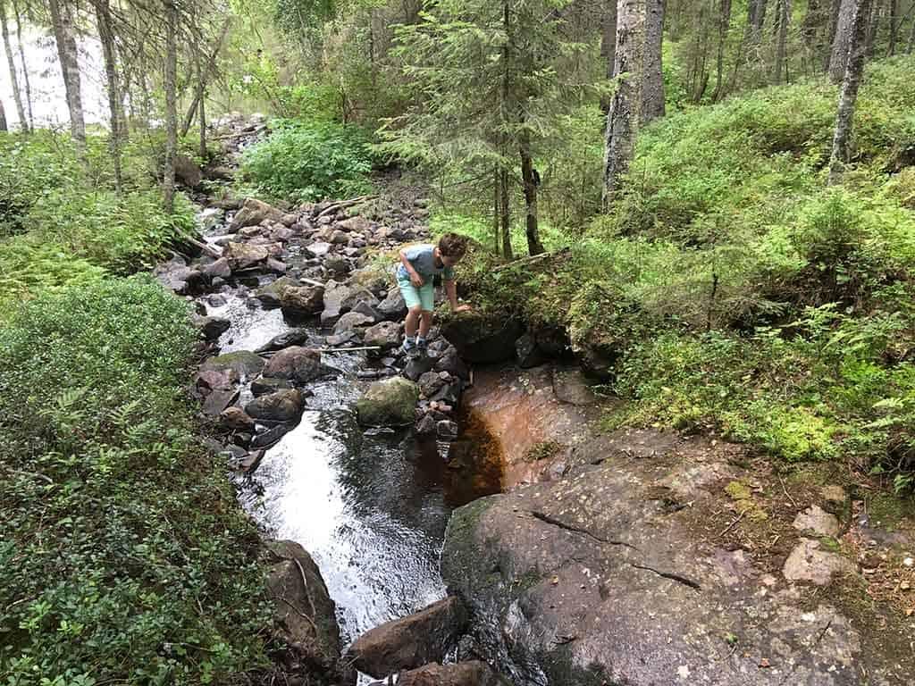 Een van de 5 redenen om naar Zweeds Lapland te gaan, is de natuur. Het barst van de rotsachtige klim- en klauterpaadjes.