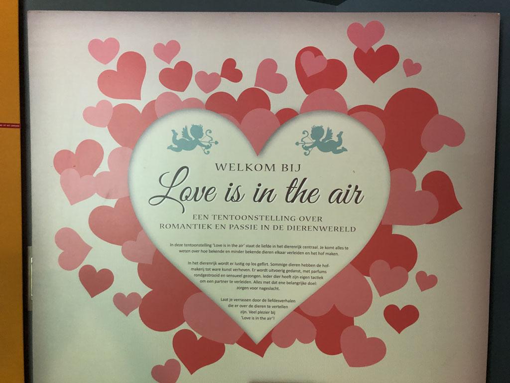 Tentoonstelling over de liefde