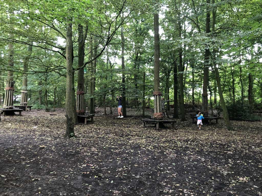 Spelen in het touwparcours in het bos