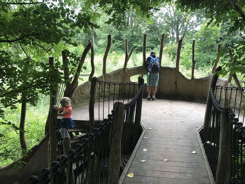 Uitkijkpunt over het Beverbos