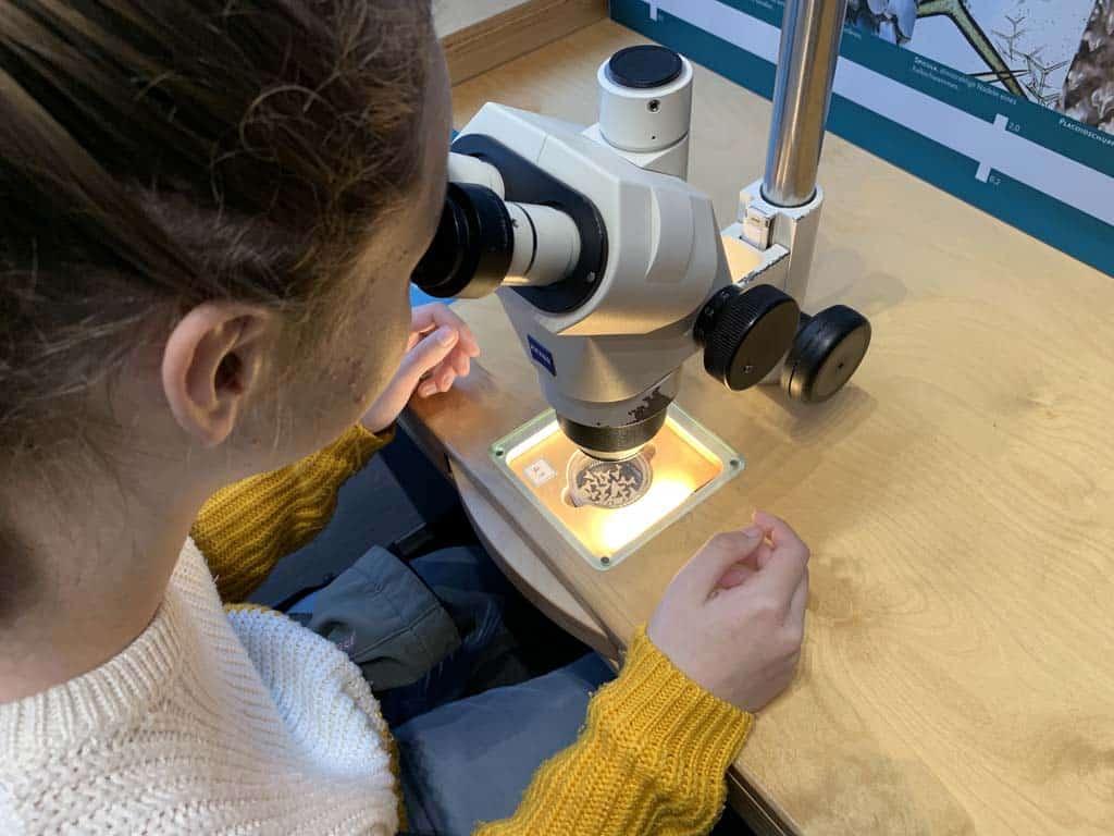 Door een microscoop turen, dat valt in de smaak bij mijn tiener.