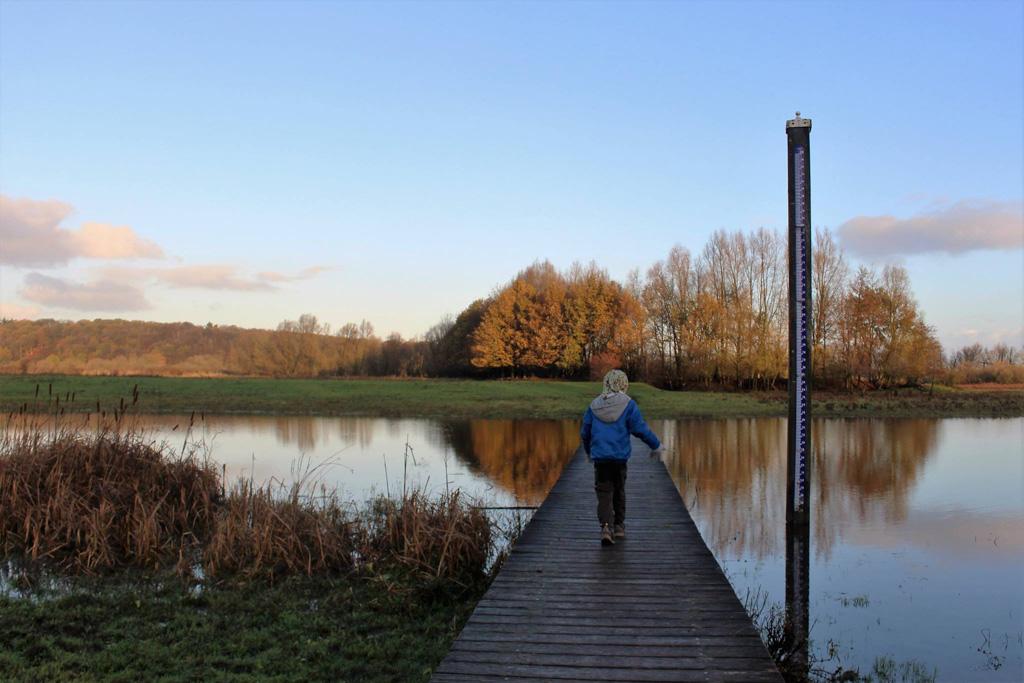 Natuurgebied de Blauwe Kamer heeft meerdere korte wandelroutes voor kinderen.