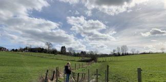 wandelen door het weiland in Limburg