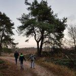 Wandelroutes in Overijssel