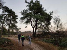 Wandelroutes-Overijssel-met-kinderen-sprengenberg