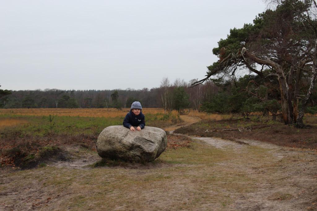 De zwerfkei op het Leersumse Veld.