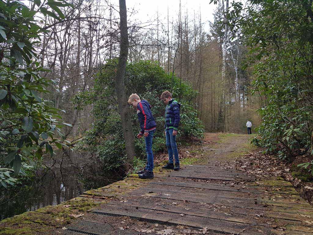 De wandeling over Landgoed Dorth.