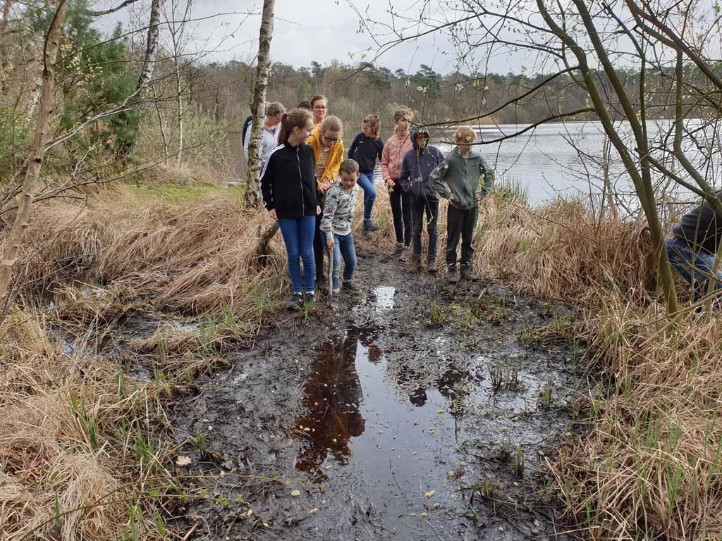 Ter geruststelling, niet alle paadjes zijn zo modderig. Er is zelfs een rolstoelroute door de Oisterwijkse bossen.